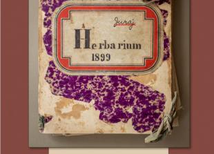 Foto: Naslovna strana knjige Don Đuro; dizajn: Saša Slovinić